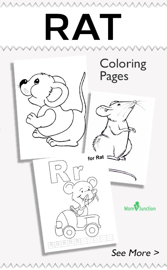 Animal Coloring Pages - MomJunction | Coloring pages ...