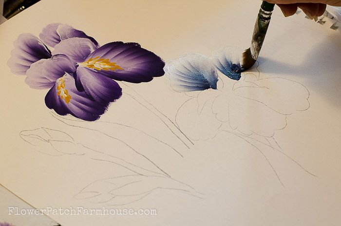 How To Paint An Iris In Acrylics Beginner Painting Easy Canvas Painting Canvas Painting Projects