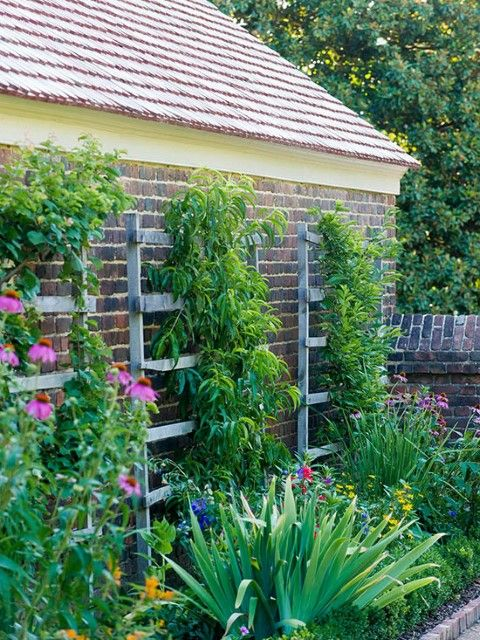 6 Awesome Small Garden Ideas To Try Today Small Gardens Narrow
