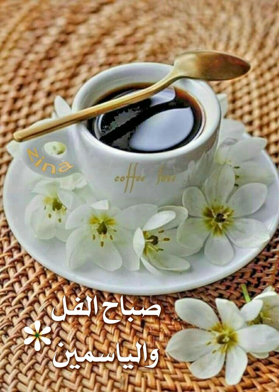 صباح الفل والياسمين Good Morning Greetings Good Morning Good Morning Gif