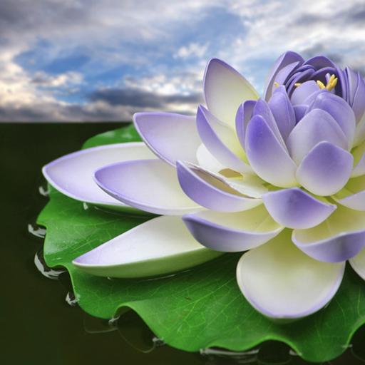 14 Wallpaper Bunga Terate Hd Lotus Flower Wallpapers Apps On Google Play Download Gambar Bunga Teratai Cantik Indah Ba Di 2020 Bunga Wallpaper Bunga Bunga Teratai