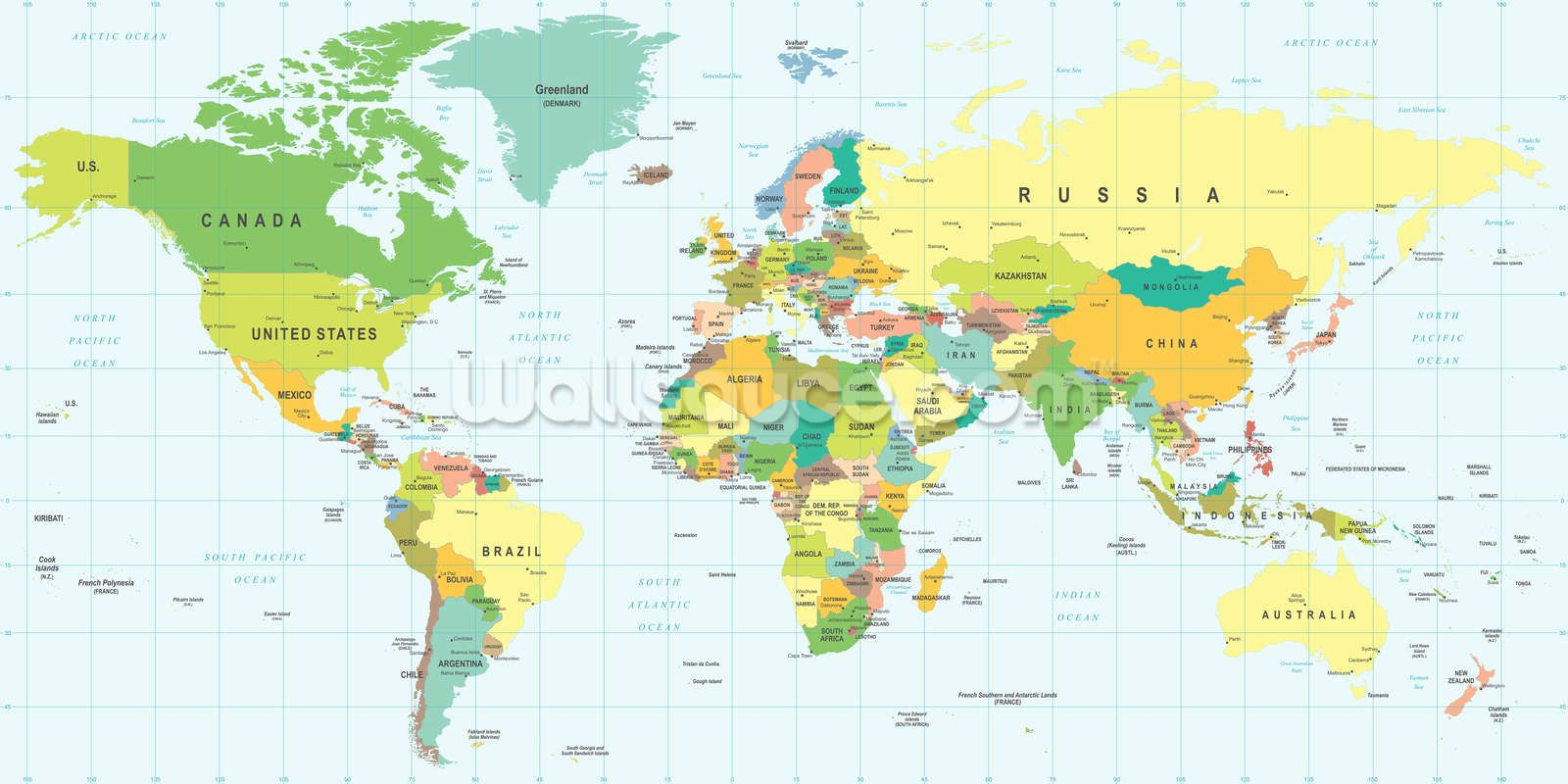 Detailed world map wall mural gumiabroncs Gallery