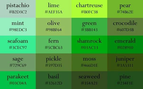 Shades Of Green Color Names Paint Color Codes Color Chip