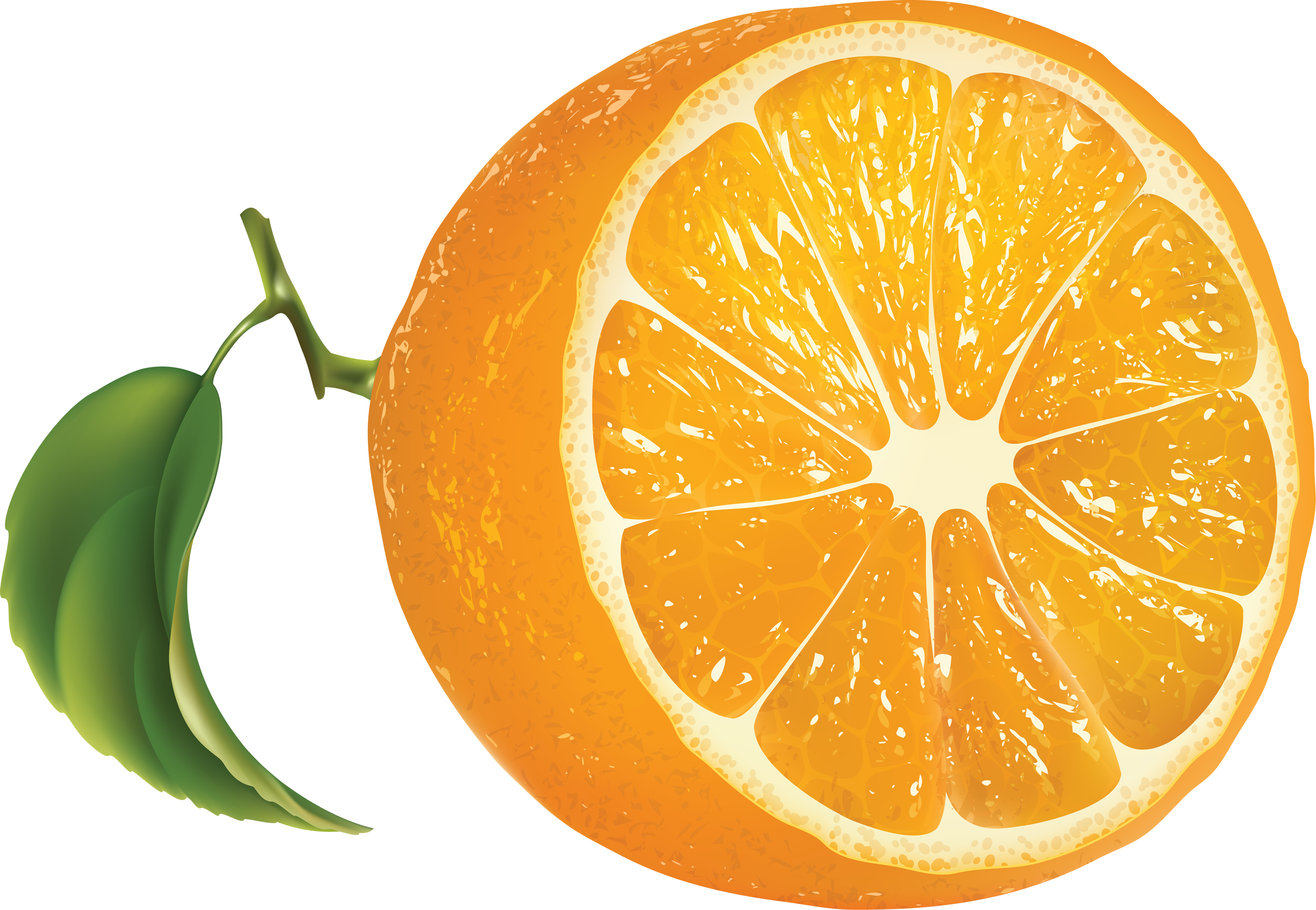 Orange Oranges Png Image Orange Orange Fruit Oranges