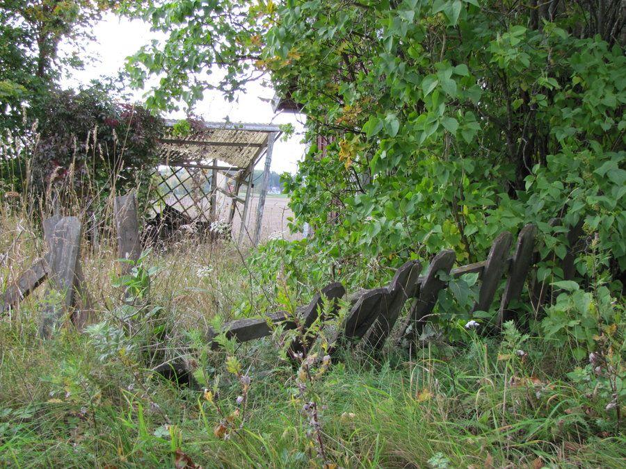 Abandoned garden by ~TMA69 on deviantART | Abandoned, Garden, Flower garden