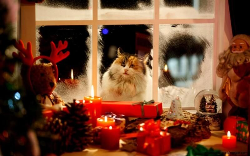 сторона в ожидании нового года картинки мариновать