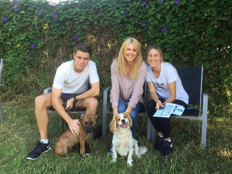 Dog Puppy Obedience Behavioural Training Perth At Allbreeds