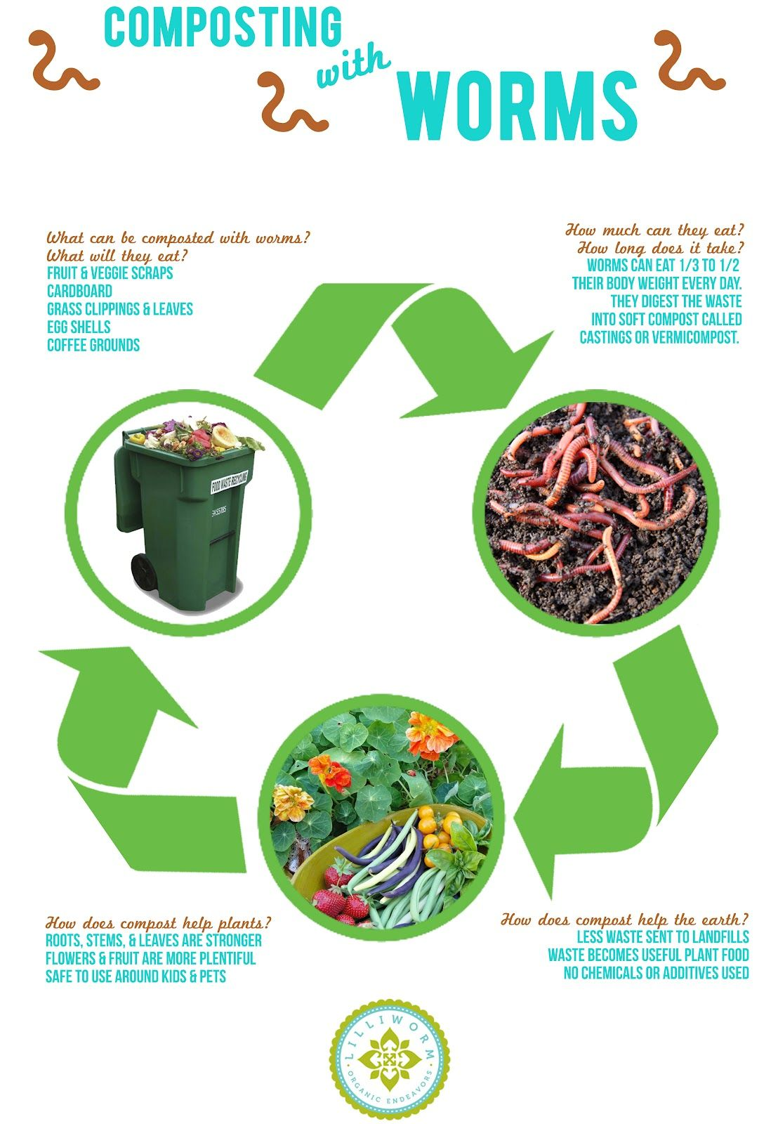 Vermicomposting poster | Celebrate 2015 Year of Soils with ...