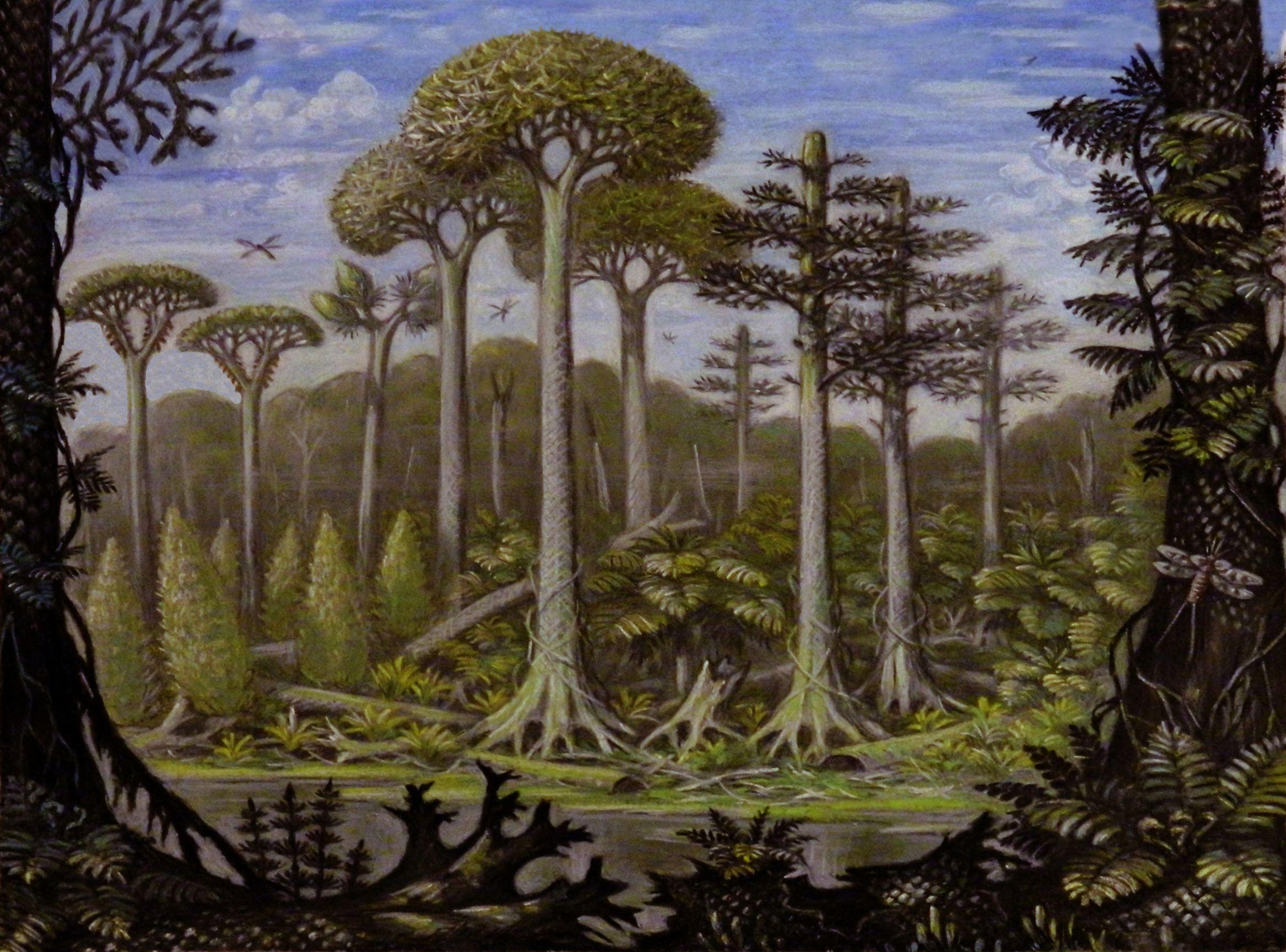 Carboniferous Period Urzeit Pinterest Prehistoria Período Und