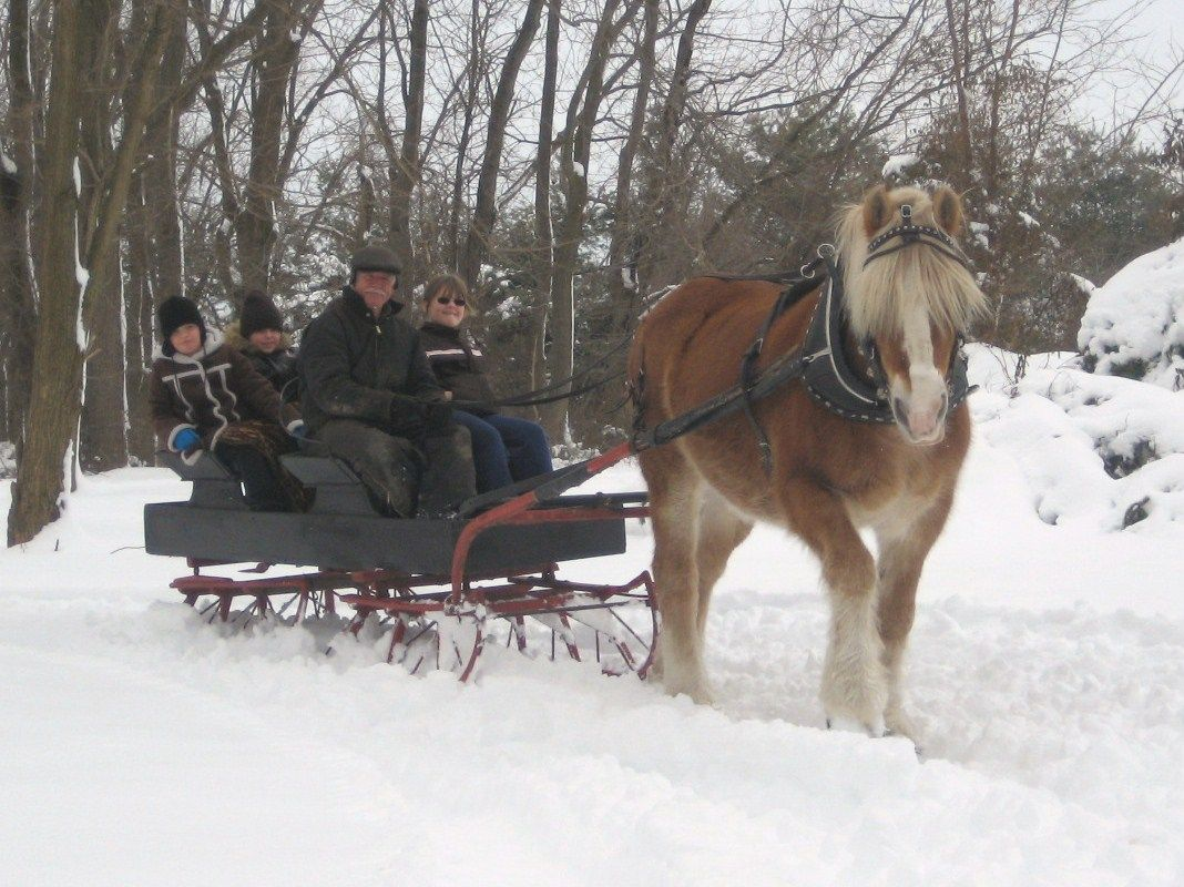 pin snow ride carriage - photo #9