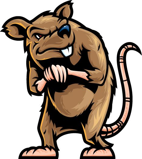 evil rat clipart - Google Search | Filthy Ratz MC623 in ...