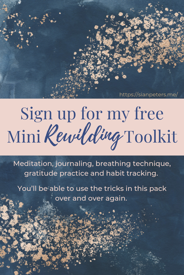 Sign up for my free Mini Rewilding Toolkit #newmoonritual Guided meditation, gratitude journaling, breathing technique, habit tracker, how to meditate, I am affirmations, rewilding, howl and blossom, wild woman rising, divine feminine, new moon ritual, full moon magic, new moon intentions, wild woman project, wild woman sisterhood, journaling prompts, journal prompt, moon rituals, moon ceremony, women's circles #newmoonritual