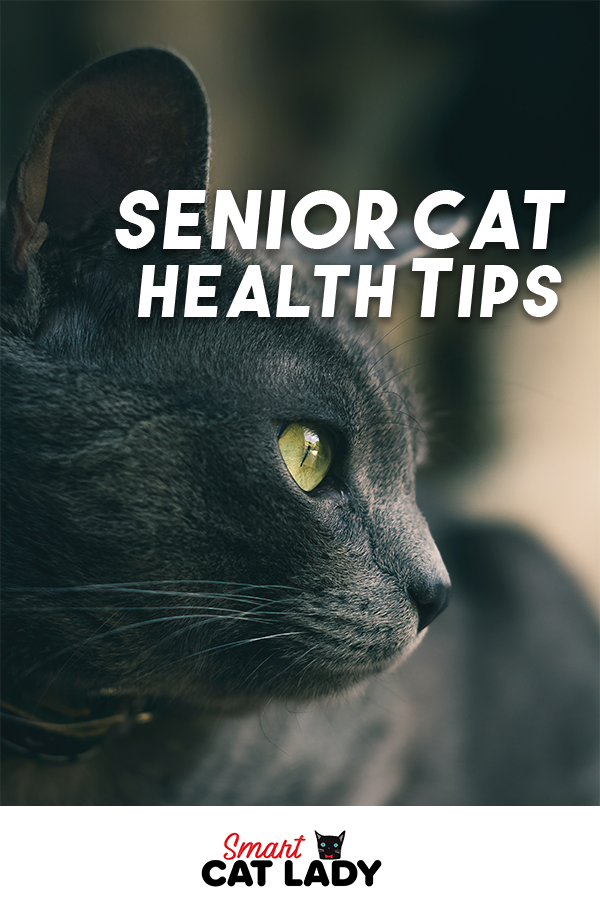 Old cat health