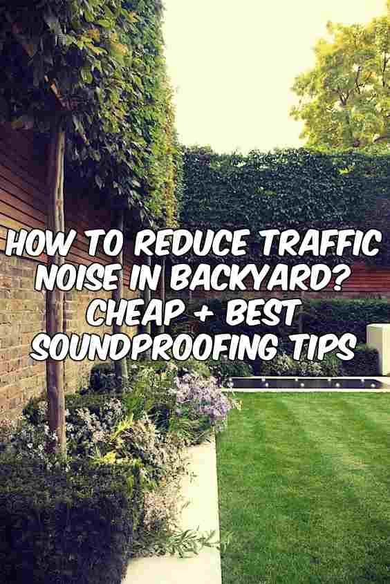 Soundproof Backyard