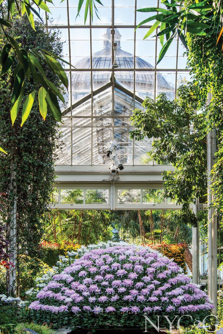 The New York Botanical Garden, The Bronx, New York, USA. #botanicgarden