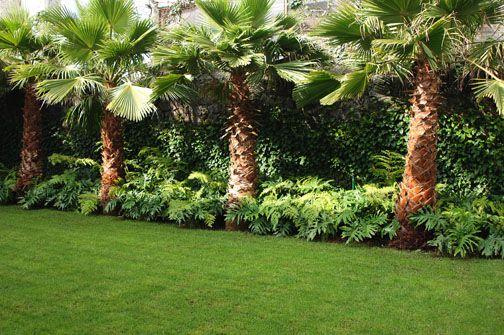 21 Jardines con palmeras