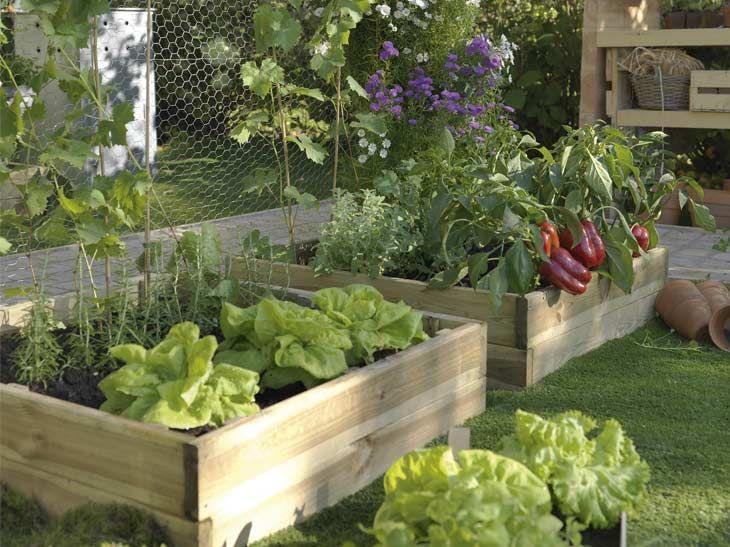 chacun son potager leroy merlin terraza y jardin pinterest garden. Black Bedroom Furniture Sets. Home Design Ideas