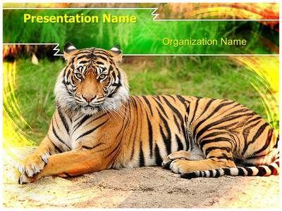 Bengal tiger powerpoint template is one of the best powerpoint bengal tiger powerpoint template is one of the best powerpoint templates by editabletemplates toneelgroepblik Gallery