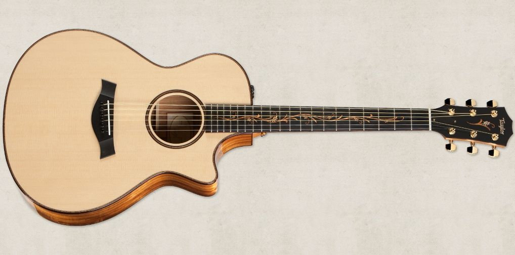 Using A Guitar Humidifier And Other Guitar Humidity Tips Taylor Guitars Taylor Guitars Guitar Bass Guitar Lessons