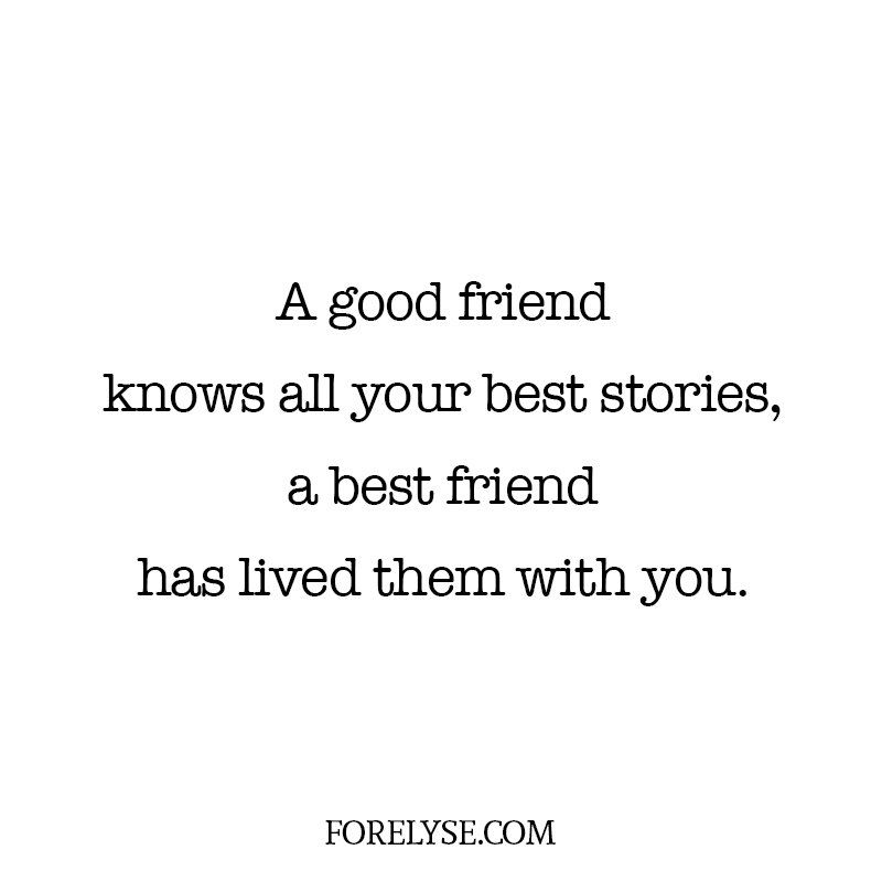 Funny Quotes, Quotes About Friends, Happy Quotes, Silly Quotes, Quotes  About Friendship