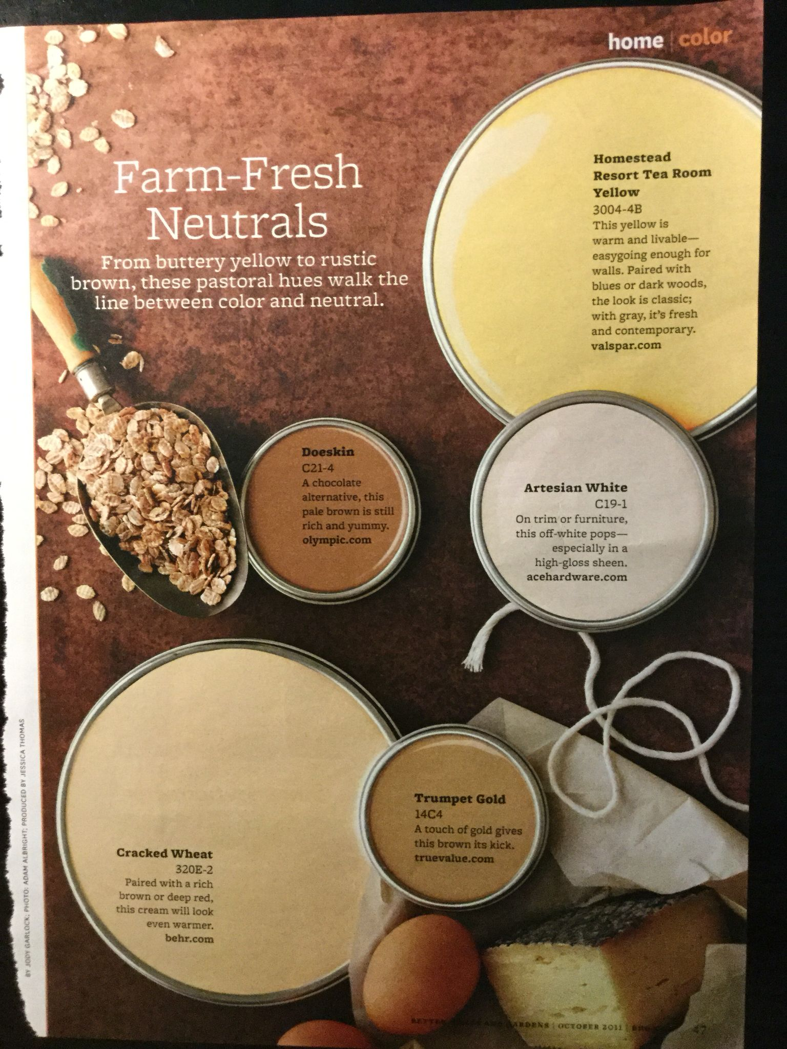 Paint Color Palette Farm Fresh Neuatral From Buttery Yellow To Rustic