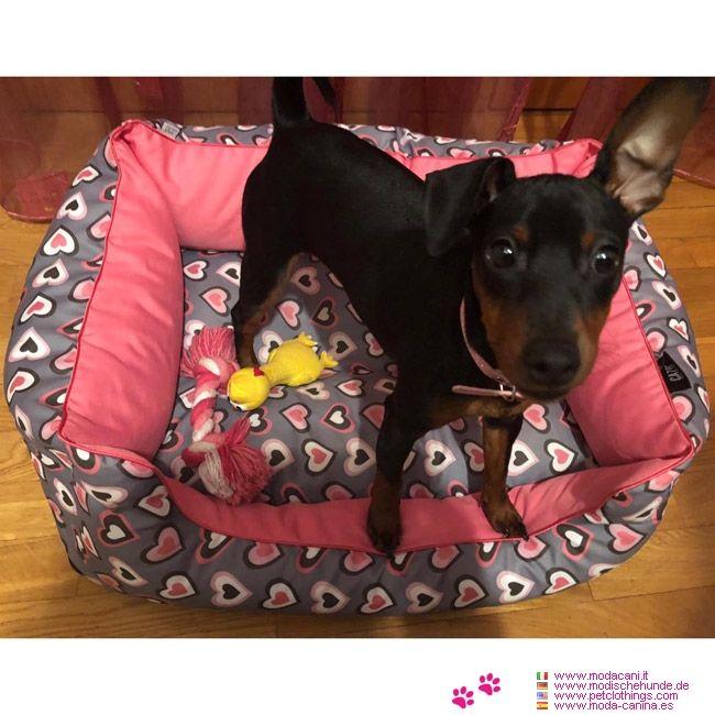 Cuccia Sfoderabile Per Cane In Rosa Con Cuori Le Foto Dei Nostri