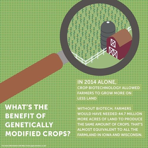 GM Crops allowed farmers to grow more on less land