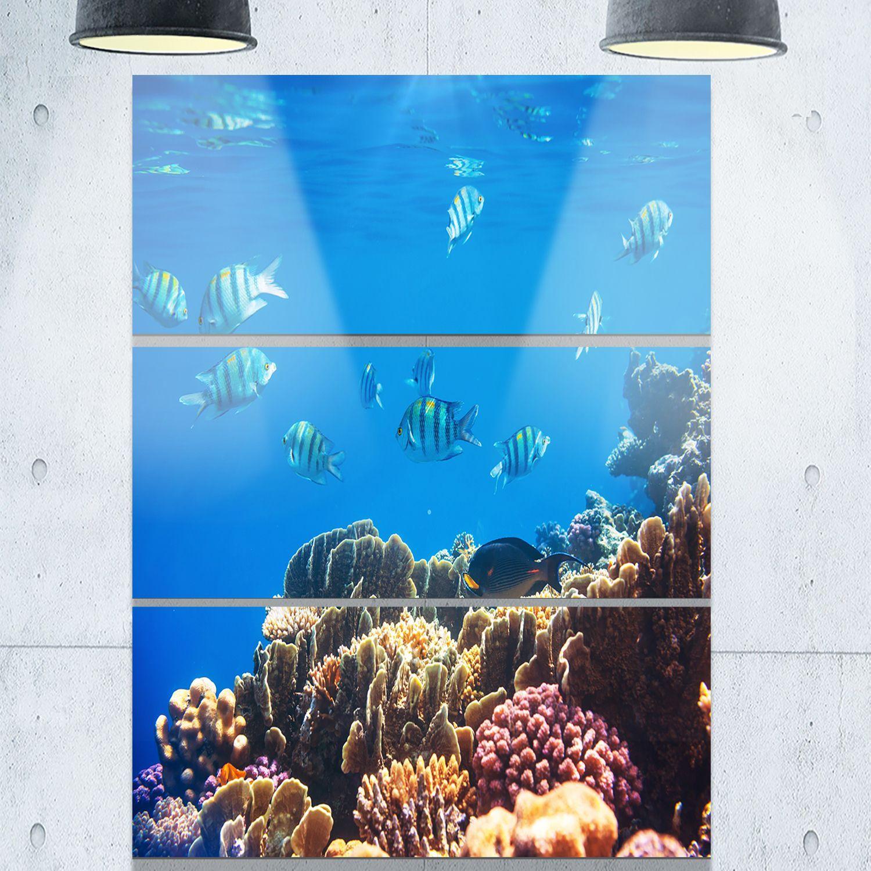 Designart bright blue waters and coral fish seashore glossy