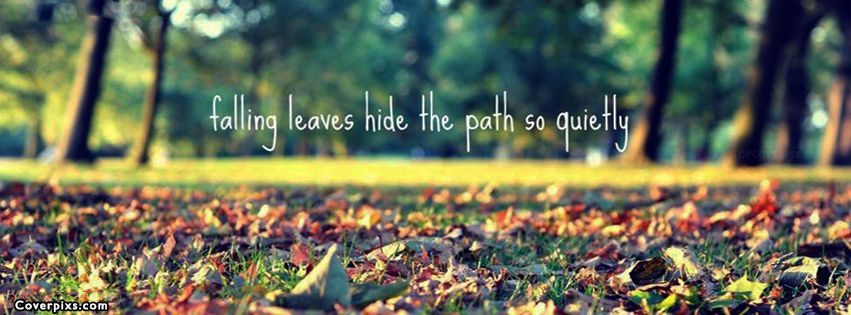 Beautiful Life Quote Facebook Cover Photos | quotes | Fall ...