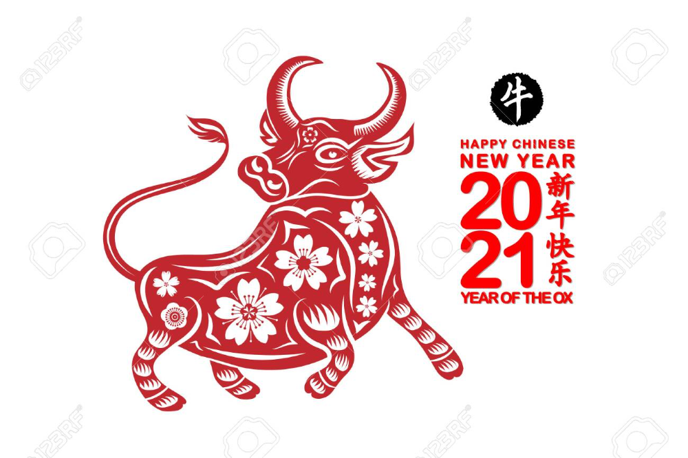 Pin On Chinese New Year 2021