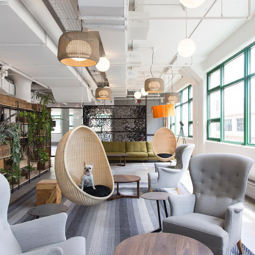 Spotted Etsy's New DogFriendly Office in DUMBO
