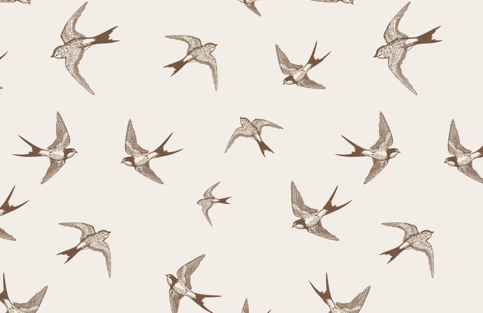 illustrative-swallows-animal%ef%bb%bf-plain