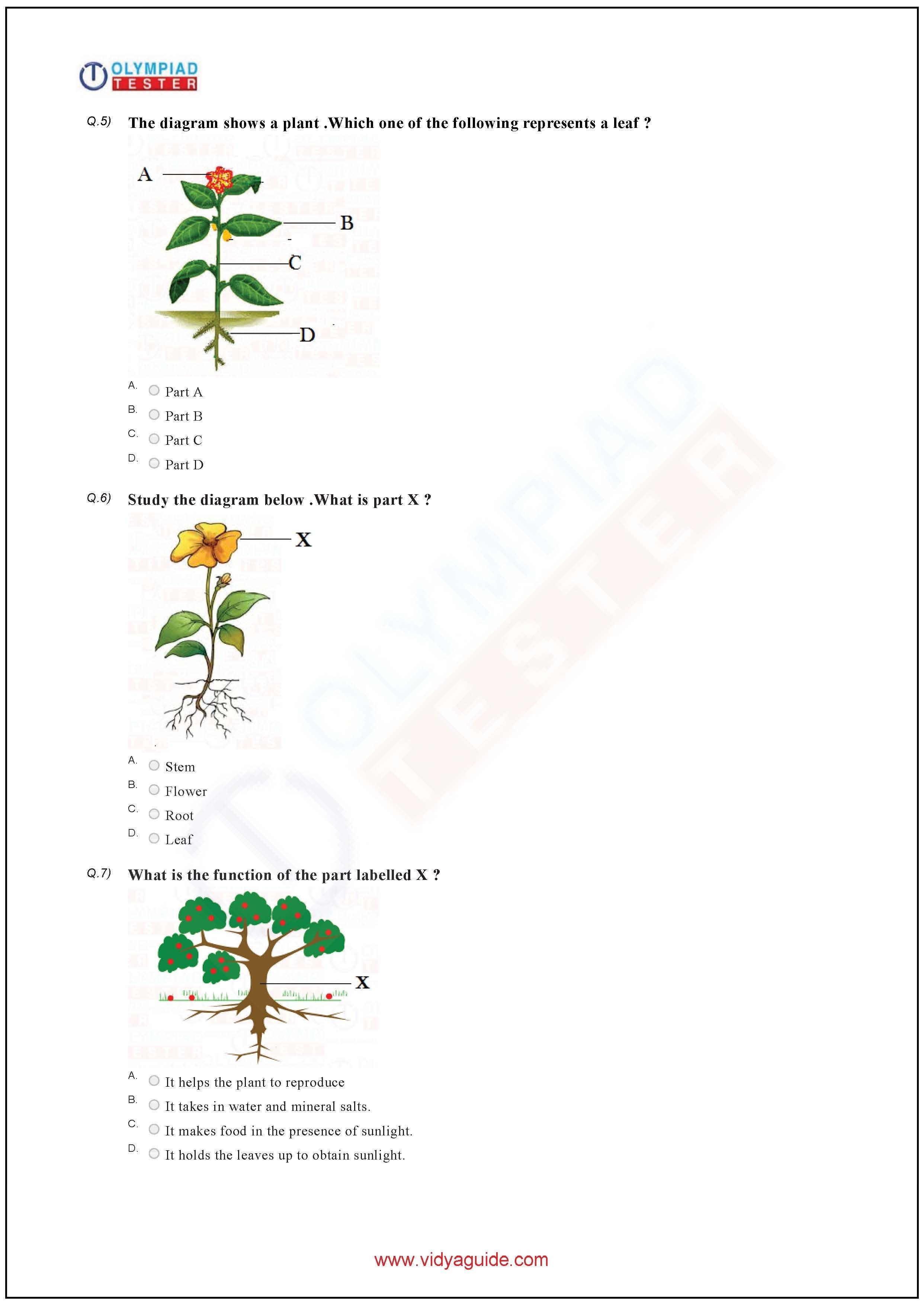 Download Grade Science Olympiad Sample Papers As