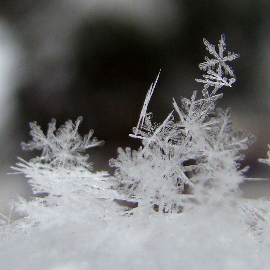 Как фотографировать падающие снежинки