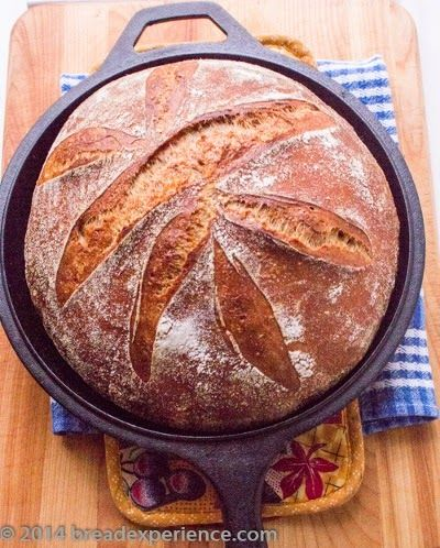 This Stout Rye and Pumpkin Sourdough is not your average loaf made with beer, and this is a good thing...