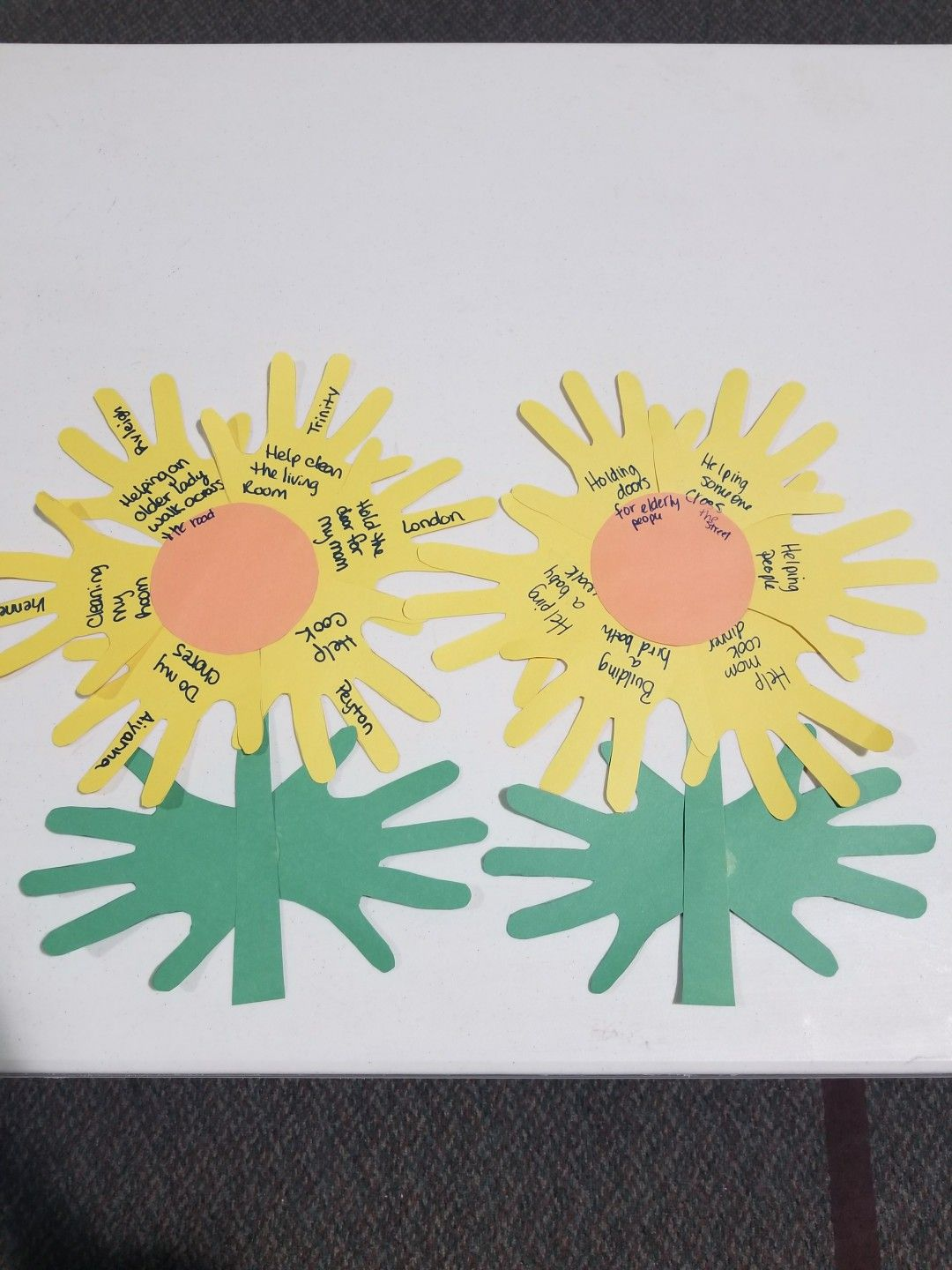 Our Helping Hands For Sunny The Sunflower Petal Daisy