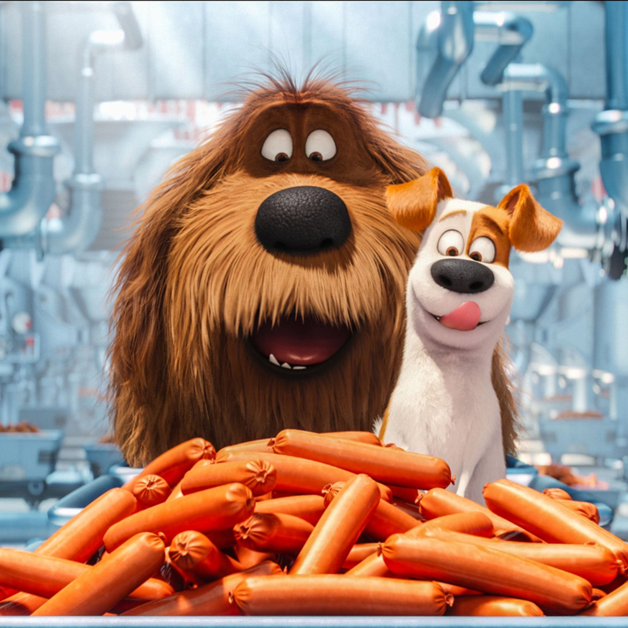 Carrots The Secret Life Of Pets Tap To See More Of The Secret Life Of Pets Wallpape Vida Secreta Dos Animais Desenhos De Personagens Da Disney Imagem De Tela