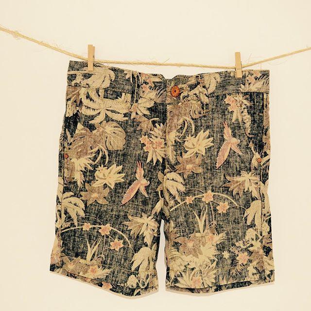 Encontrala en www.bowandarrow.com.ar #boysfashion #shorts #childrenclothing