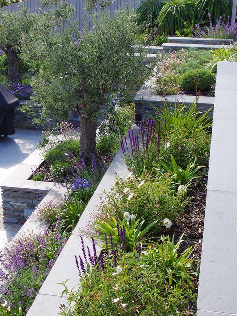 Garden Design By Cornwall Designer Based In Falmouth Mediterranean Terrace Garden In 2020 Garden Design London Garden Design Terrace Garden