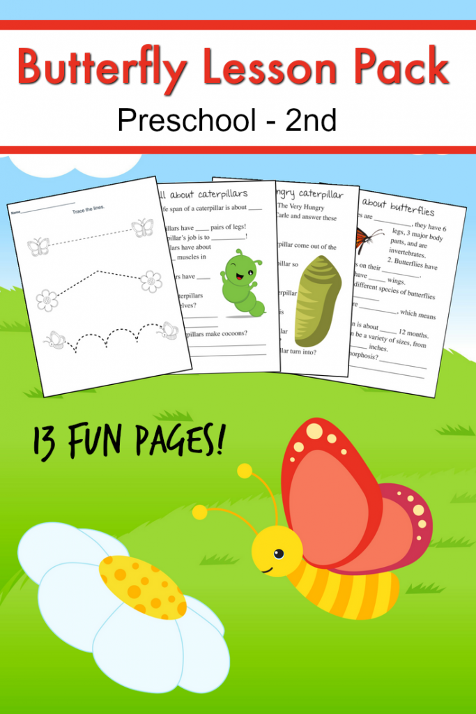 FREE Butterfly Lesson Pack | Currículum y Insectos