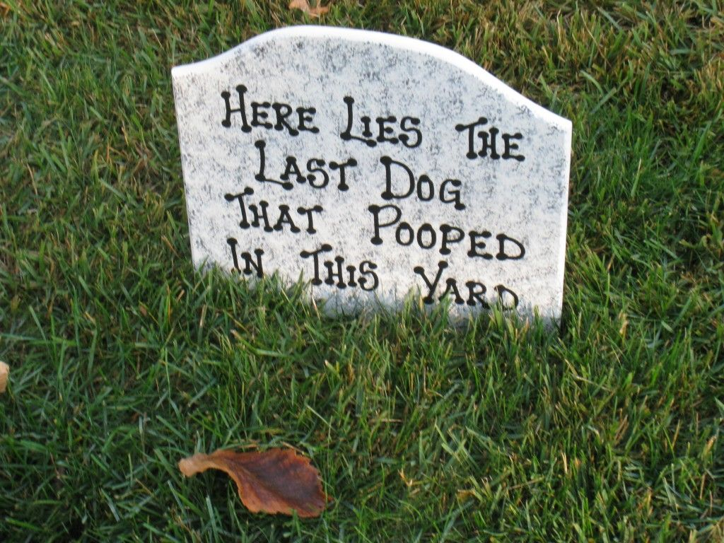 dog tombstone for halloween a tongue in cheek warning to dog owners who don - Halloween Tombstone Decorations