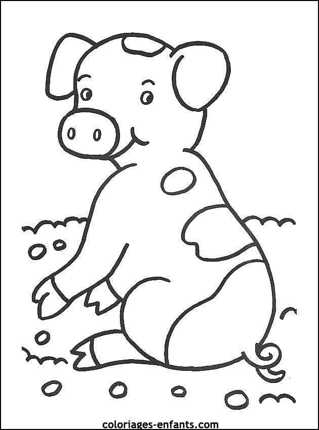 kleurplaat  varken