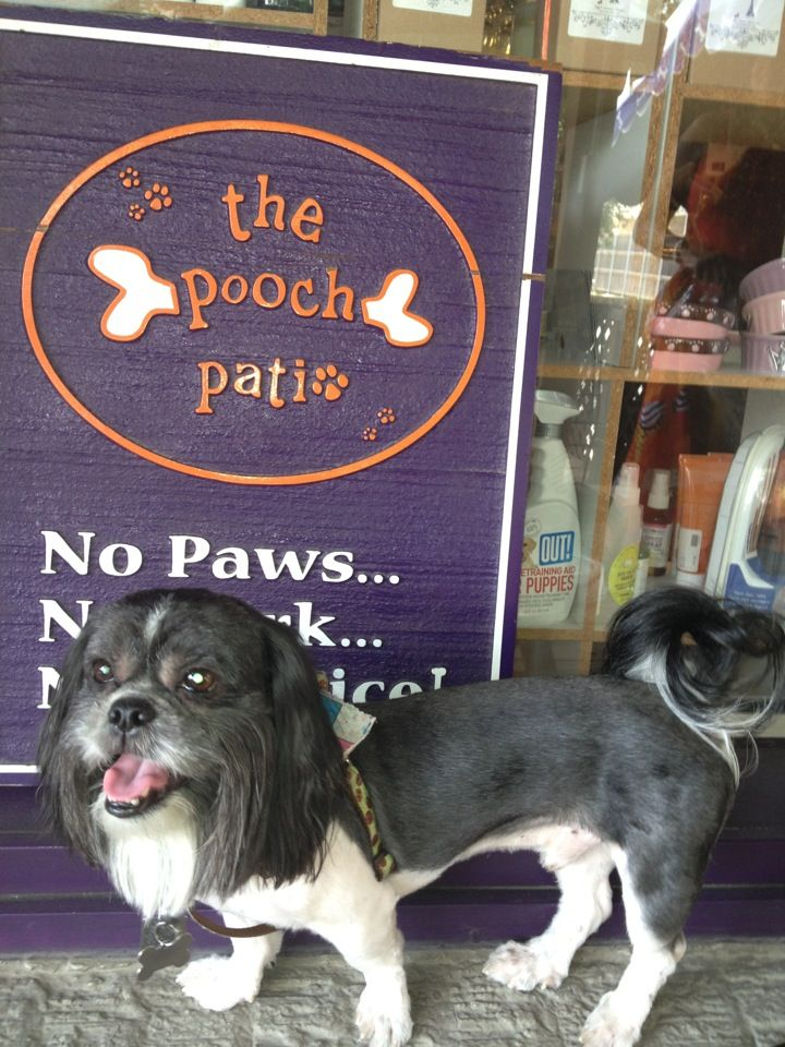 Scoot On Over To The Pooch Patio