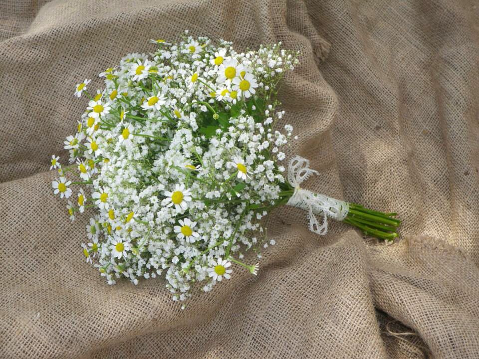 Gypsophila and daisy bouquet, flowers by Davina | bridal | Pinterest ...