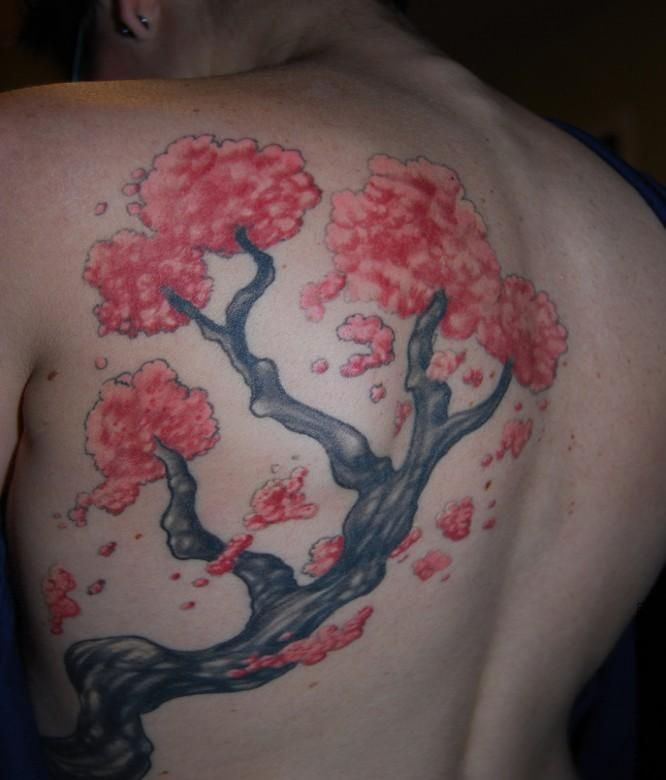 Pink Bonsai Tree Tattoos 2013 For Girls Blossom Tree Tattoo Cherry Blossom Tree Tattoo Bonsai Tree Tattoos