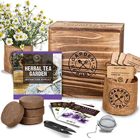 Indoor Herb Garden Seed Starter Kit Organic