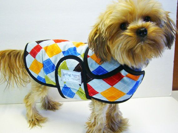 Hey, I found this really awesome Etsy listing at https://www.etsy.com/listing/203280956/bue-argyle-minky-dog-coat-20-dollars-to