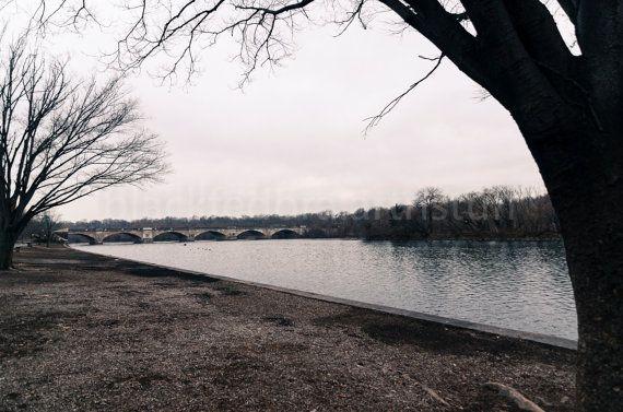 barren trees and river winter scene by BlackFedoraArtnStuff, $23.00