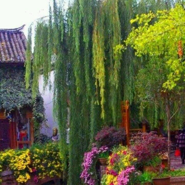 Secret Garden: Peaceful Settings