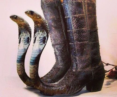 Mexican Pointy Boots For Sale Google Search Mexican